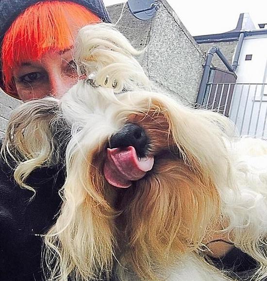英女子与爱犬结婚八年:它比任何一个男人都要好