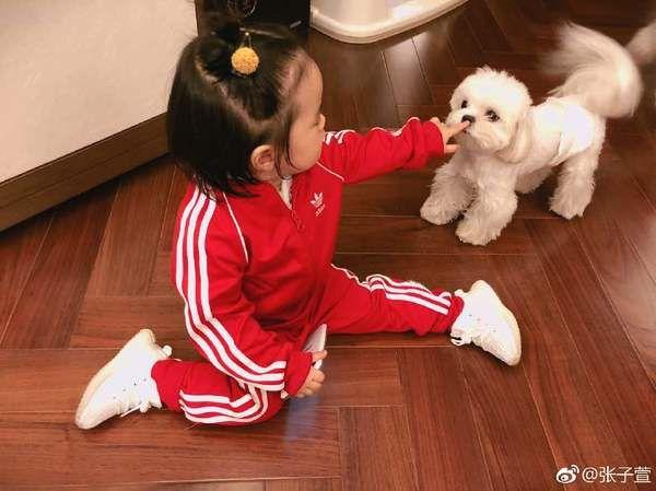 不被祝福的张子萱,依然生活幸福,被陈赫宠成了 小公主……